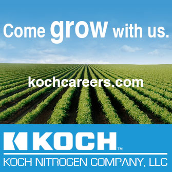 Koch Careers